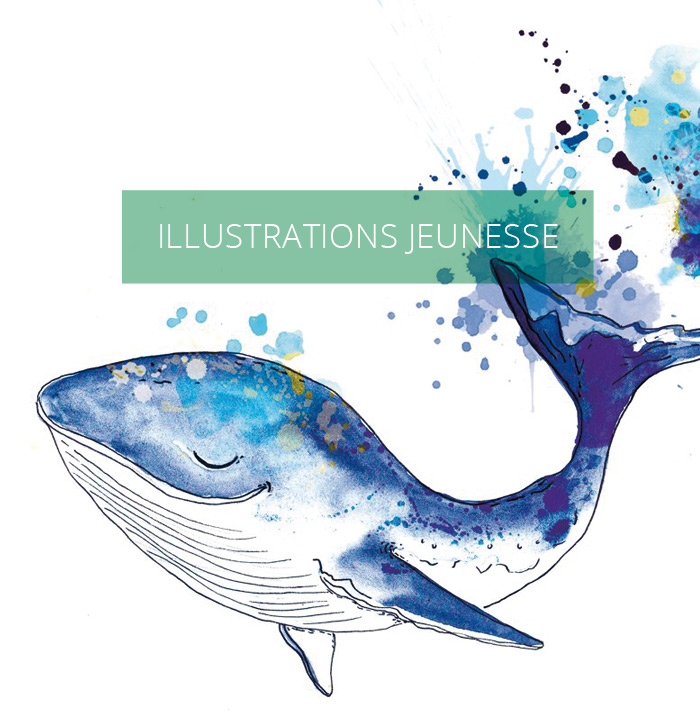 illustrateur jeunesse lille